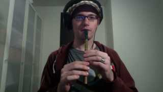 The Spanish Lady - Irish Traditional on Tin Whistle