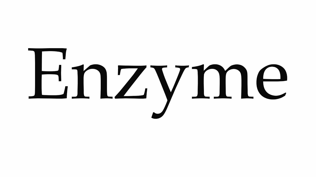 How to Pronounce Enzyme
