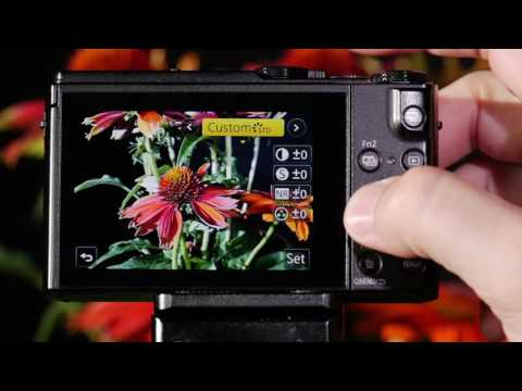 Panasonic LUMIX DMC-LX10 Custom Setting