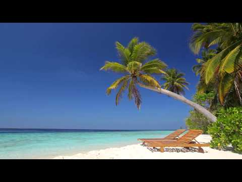☀ Beach Ambience on Tropical Paradise Island Maldives ☀ Calm Ocean Sounds for Relaxing & Sleeping