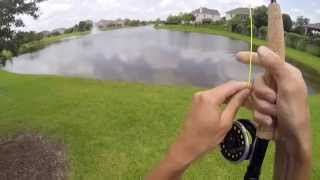 14lb Grass Carp Caught with a Fly Rod