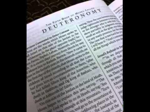Deuteronomy 28 - New International Version (NIV) Dramatized Audio Bible