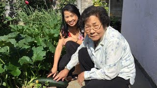 asian vegetable herb garden tour cooking what you grow vietnamese food recipes