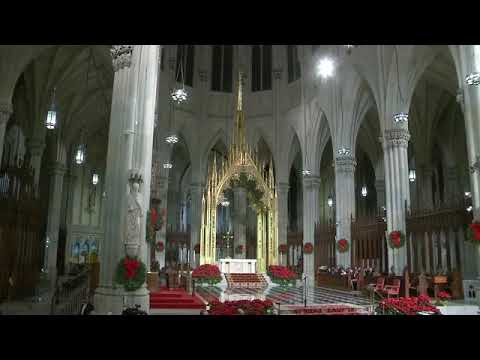 Midnight Mass at St. Patrick's Cathedral 2018