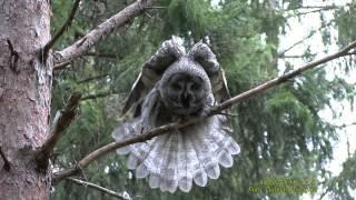UGGLOR  Owls  Klipp - 1536