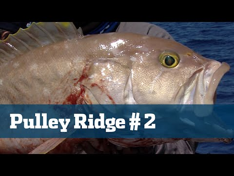 Florida Sport Fishing TV - Gulf Grouper Snapper Deep Drop Tilefish Offshore - Season 04 Episode 04