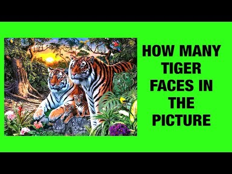 how many tiger faces in the picture