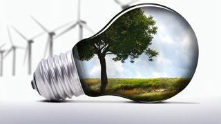 Потоки вещества и энергии в экосистеме.  Урок биологии.
