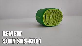 Review Sony SRS-XB01 Nuevo altavoz Bluetooth portatil 2018