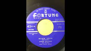 Andre Williams w/ Gino Parks - You Are My Sunshine bw Mean Jean FORTUNE