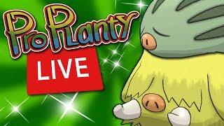 Shiny Swinub Community Day Pokemon Go