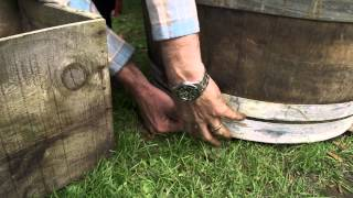 How to sow seedlings in containers