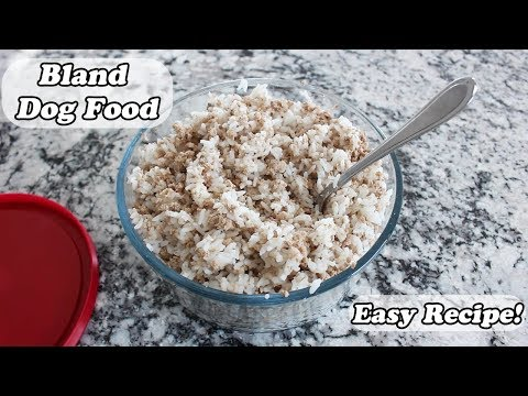 Easy Bland Dog Food Recipe! | For GI Upset