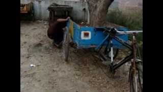 desi Indian girl pulling cycle rickshaw