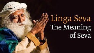 Linga Seva | The Meaning of Seva - Sadhguru
