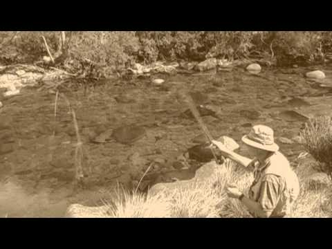 True Tales of the Trout Cod - Murrumbidgee River HD.wmv