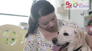 導盲犬的一生 Journey of a Guide Dog