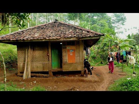 Download Tinggal bertiga Di Rumah sederhana di kampung terpencil | Kampung Cidageul Cianjur Jawa barat