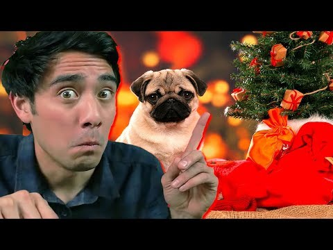 Funny Zach King Christmas Magic Tricks Collection - Best Awesome Magic Vines Ever