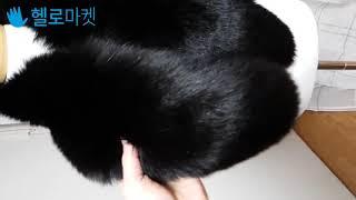 촤르르 윤기 폭스퍼 라쿤퍼 털목도리 퍼숄(49900원)