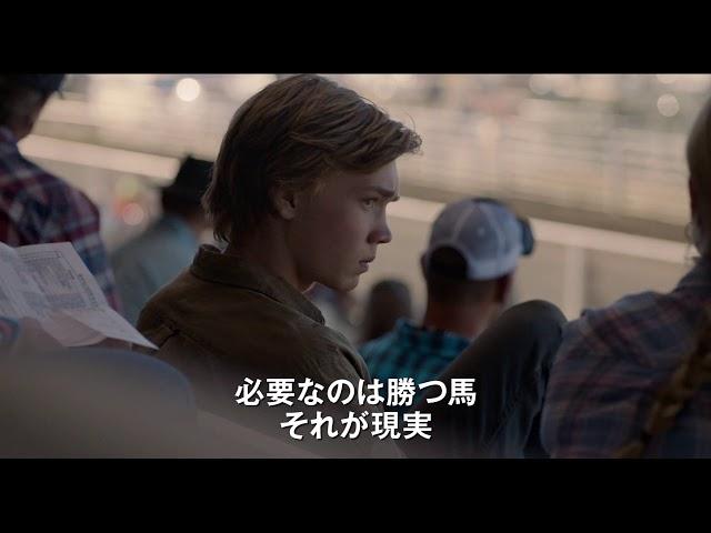 映画『荒野にて』予告編