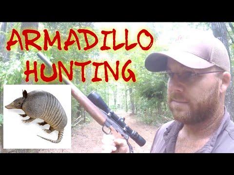 ARMADILLO HUNTING 🤔🤔🤔 At Hollis Farms