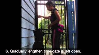 How to Teach Your Dog Manners at the Gate
