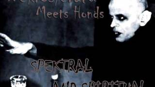 Nekrosferatu Meets Honds - Spektral and Spiritual
