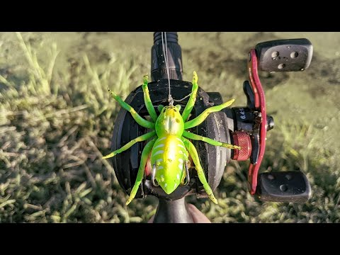 Testing Out A Spider Fishing Lure!/Is It Any Good?
