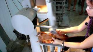 How to Make Crocodile Skin Products in Singapore