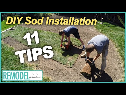Outdoor Projects | 11 Tips for a DIY Sod Installation