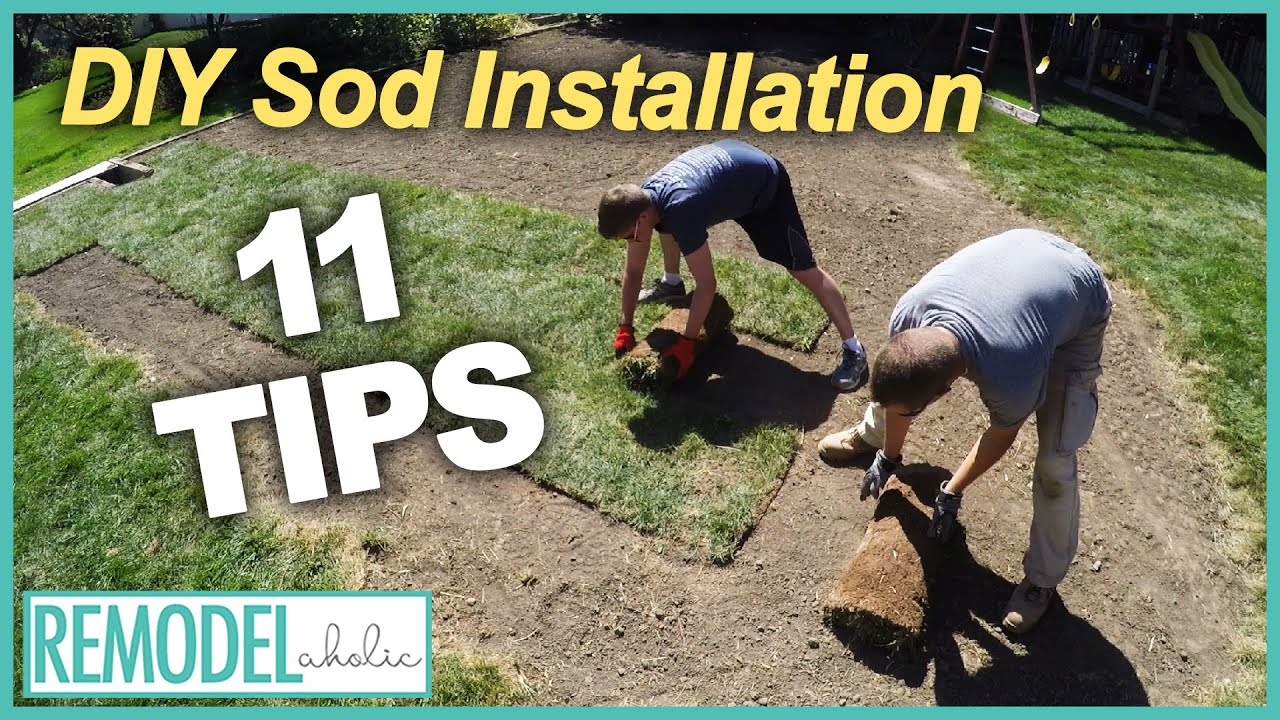 Outdoor Projects 11 Tips For A Diy Sod Installation You