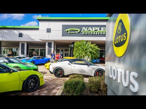 Lotus Service Clinic - January 2020