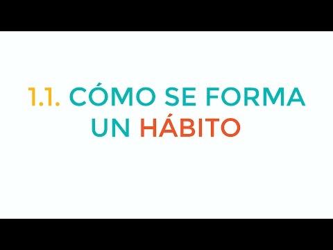 cómo-se-forman-los-hábitos