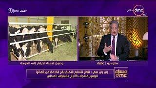 مساء dmc - بي بي سي : قطر تتسلم شحنة بقر قادمة من ألمانيا لتوفير منتجات الألبان بالسوق المحلي