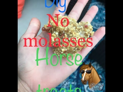 DIY NO MOLASSES HORSE TREATS!!🐴