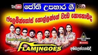 Deepal Priyantha with Flamingoes - Ambalangoda 2020