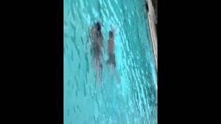 dj chacha swimming