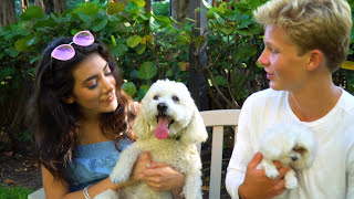 NO TE PIDO MUCHO - Giselle Torres
