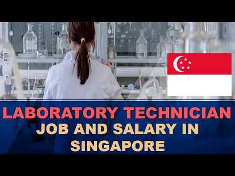 Laboratory Technician Salary In Singapore - Jobs And Salaries In Singapore