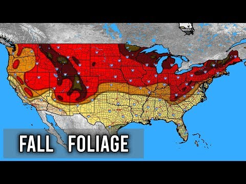When To Expect Your Peak Fall Foliage