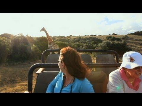 Caught on Tape: Frightening Footage of Giraffe Attack