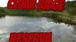 cedar ridge preserve dallas Texas.