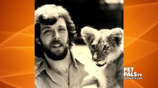 The Animal Guy celebrates 42 years of critter education