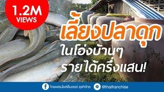 เลี้ยงปลาดุกในโอ่ง รายได้ครึ่งแสน!
