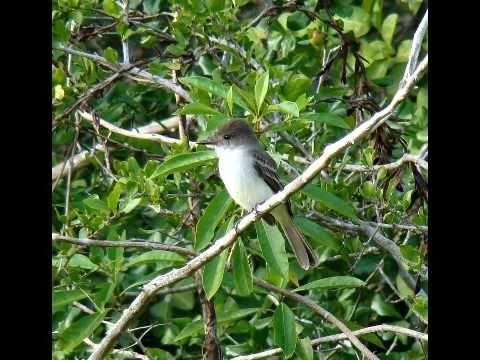 Guanahacabibes National Park, Cuba