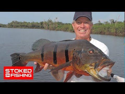 Stoked On The Amazon, part 5