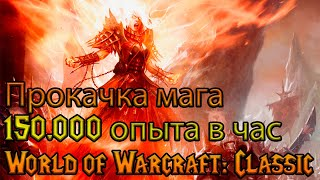 150.000 опыта в час - это реально! World of Warcraft: Classic
