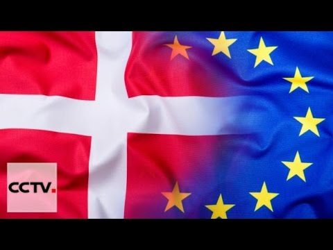 Nearly half of Denmark want to vote on EU membership