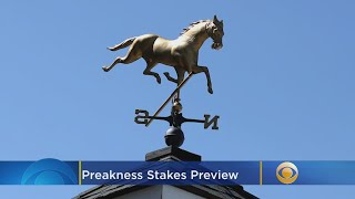Preakness Stakes Preview